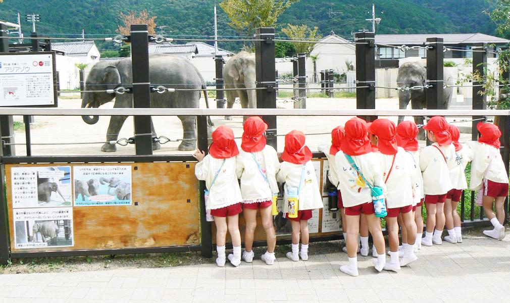 遠足京都動物園